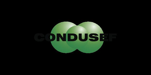 2.2 Logos CONCAMEX-04